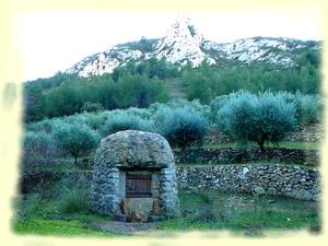 Randonnée Parc des Bruyères - Les oliviers - Les Randos de Loulou
