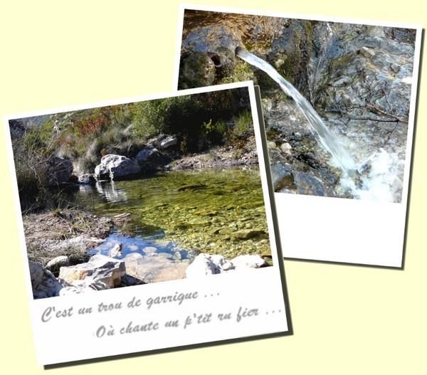 La source des eaux vives - Massif Saint-Cyr - Les Randos de Loulou