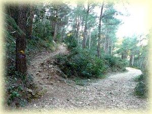 A gauche le tracé jaune monte vers la Candole