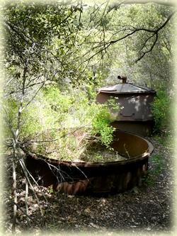 Le ravin des Encanaux, fours à charbon - Randonnée Sainte Baume - Les Randos de Loulou
