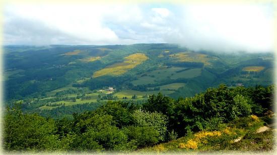 Randonnée forêt de Beson_Tarn_Les Randos de Loulou