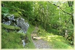 Randonnée Roc de Peyremaux_Tarn_Les Randos de Loulou